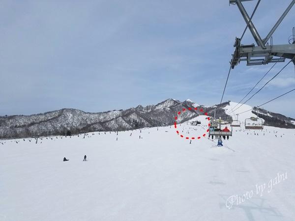 岩原スキー場ゲレ食