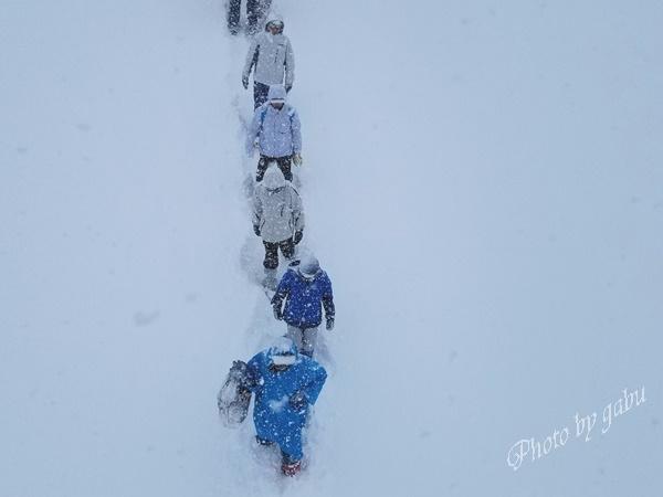 岩原スキー場 大雪